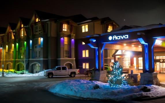 Propertymain_aava_1_1_1__winter_pride_-__phil_nicols